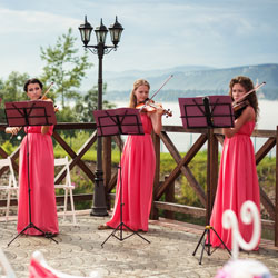 Wedding musicians and singers - tips image